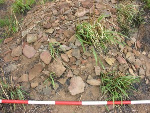 dense-accumulation-of-ancient-potsherds-galpaya