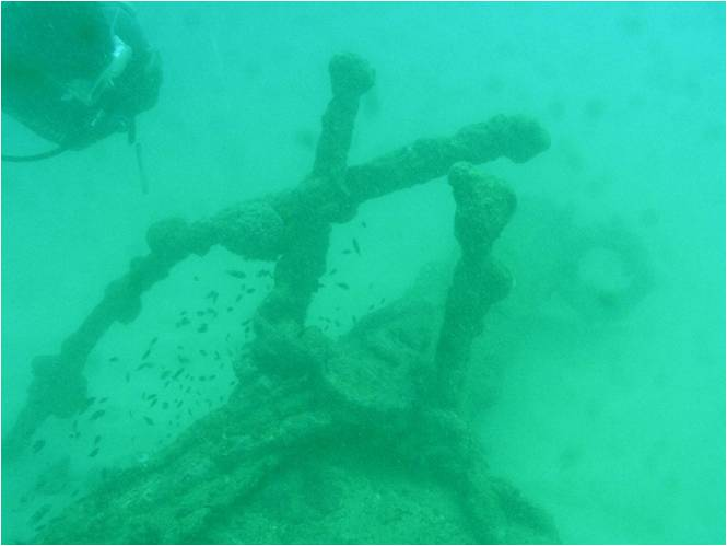 Remains of wreck1