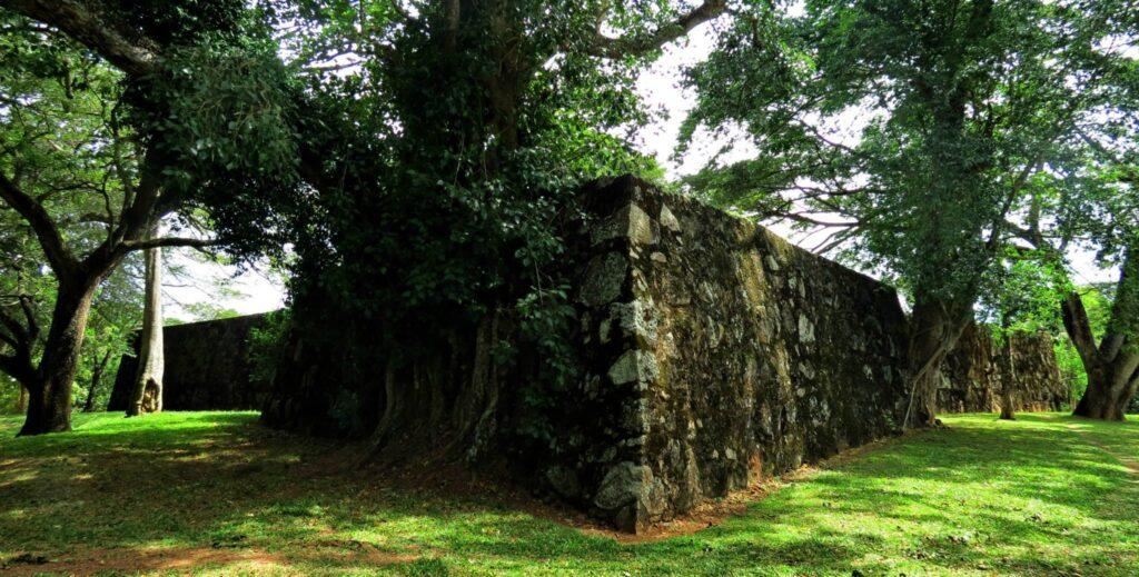 Katuwana Fort excavatio